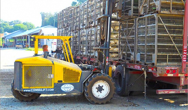 Combi-RT Series Poultry Handler Forklift